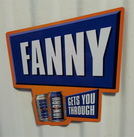 fanny A Tale of Two Fannies